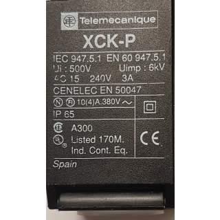 XCK-P 655  Endschalter